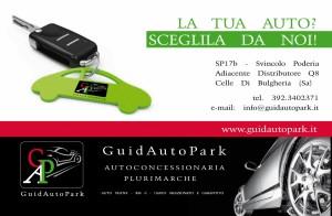 GAP - Guida autopark