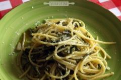 spaghetti65